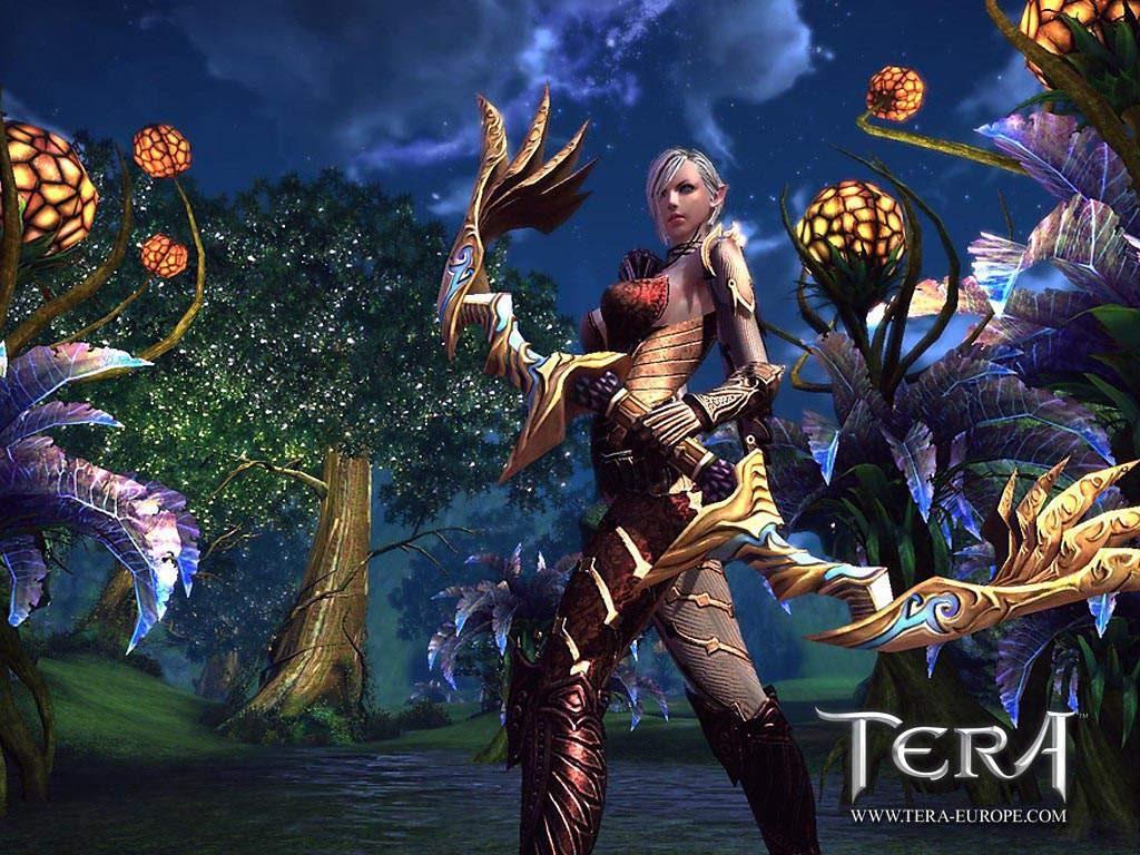 Personnage jeu Tera